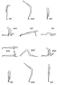12 Movimientos Saludo Sol